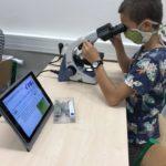 Kroužek mikroskopování