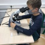 Kroužek mikroskopování  otevřen zájemcům