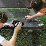 Práce se školními fotoaparáty