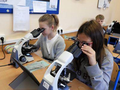 Z kroužku mikroskopování