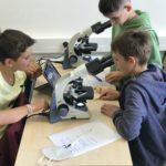 Mikroskopování během projektového dne na ČRG, 8. 9. 2021